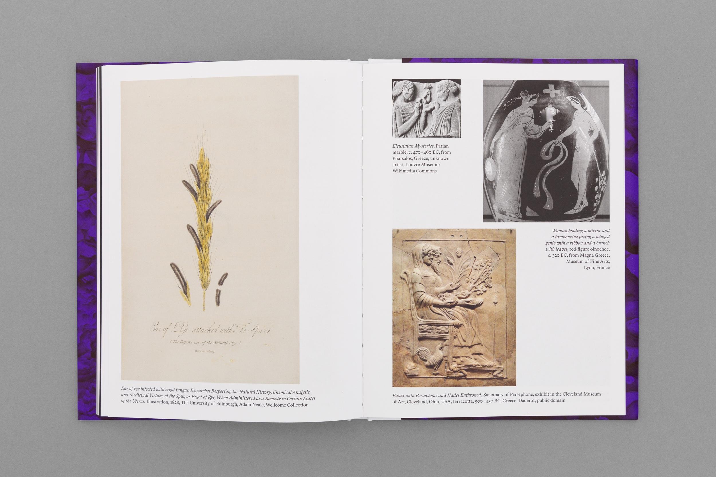 Livro - Diana Policarpo-13.jpg